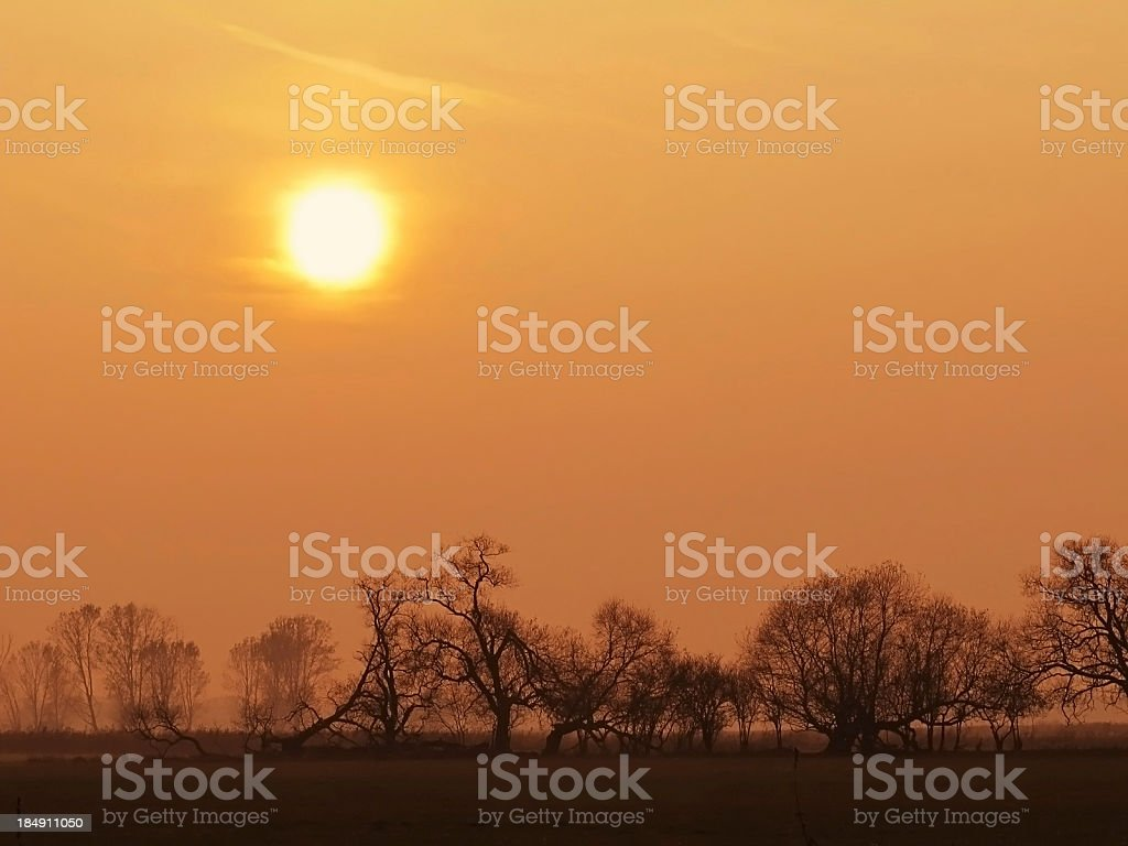 Sunset at meadow landscape on Havelland (Germany) stock photo