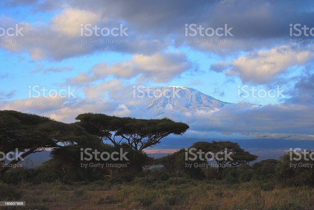 Sunset at mount Kilimanjaro stock photo