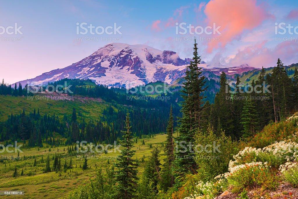 sunset at mount rainier stock photo
