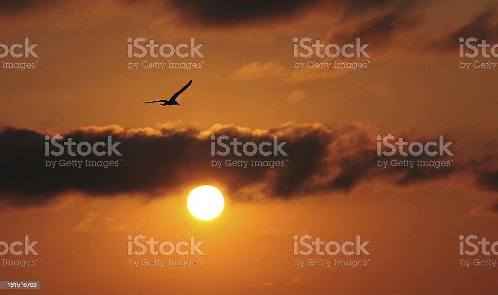 Sunset at San Sebastian in the Jazzaldia stock photo