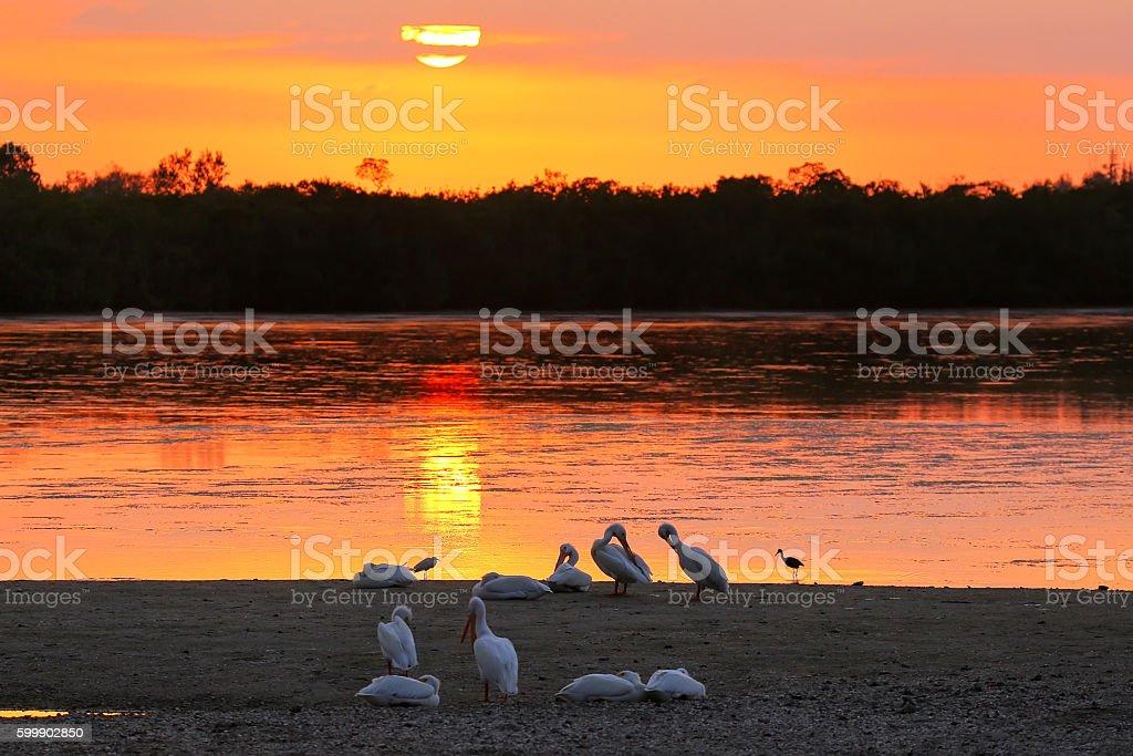 Sunset at Sanibel island, Florida stock photo