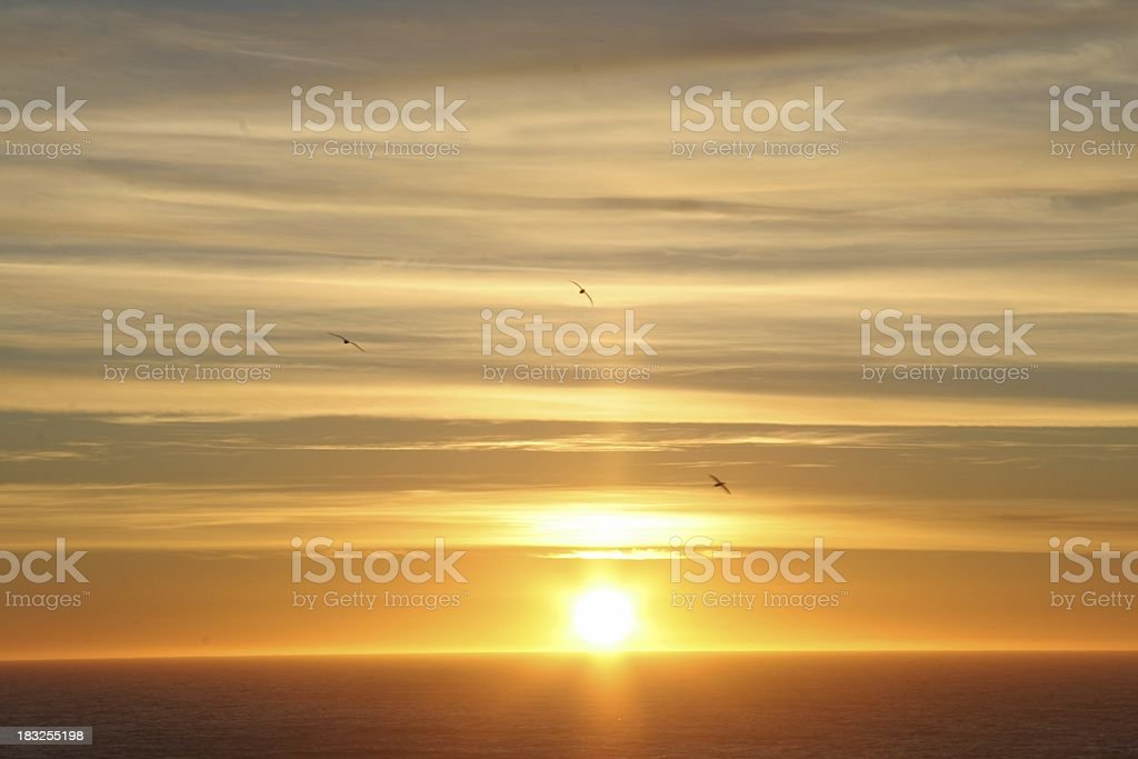 sunset at sea stock photo