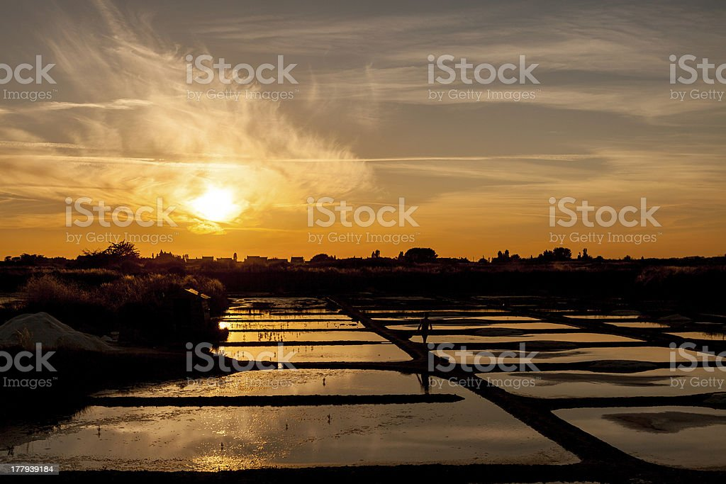 sunset at sea salt pans in France with child shadow stock photo