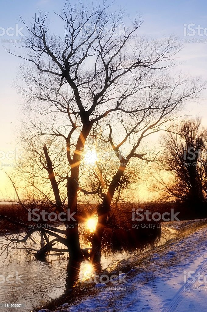 Sunset at snowy lake winter landscape on Havelland (Germany) stock photo