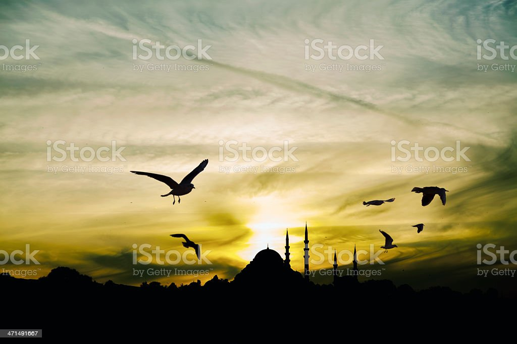 Sunset at İstanbul royalty-free stock photo
