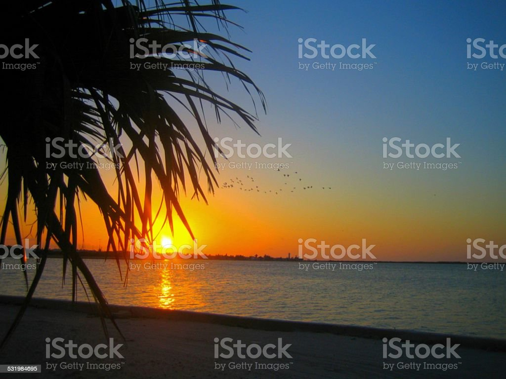 sunset at the beach ocean panorama stock photo
