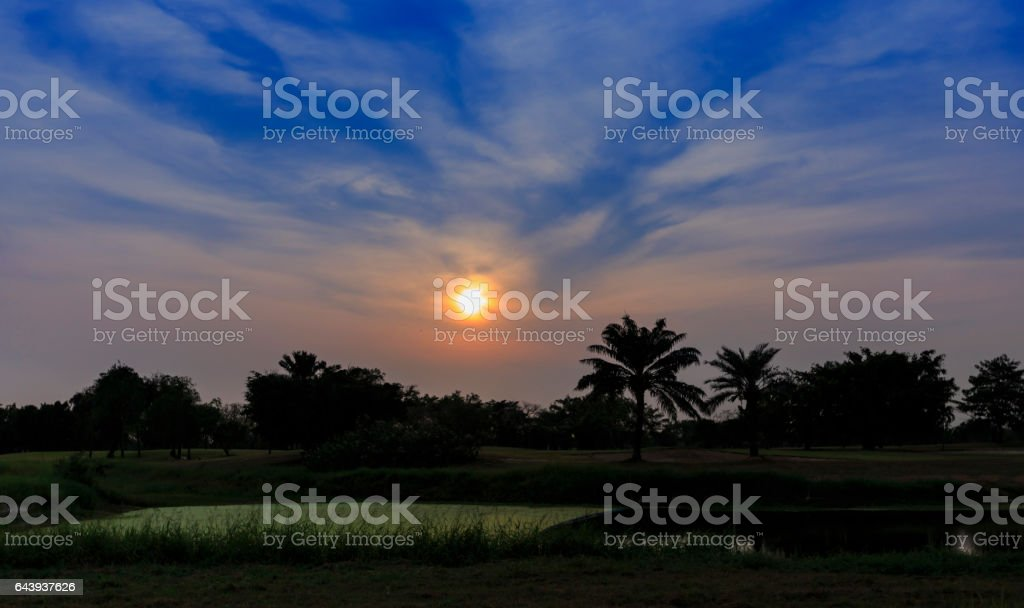 Sunset at the golf course lake. stock photo