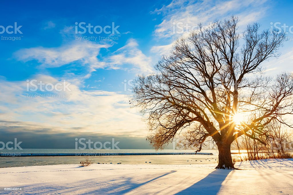 Sunset at the Shores of Lake Ontario during Winter stock photo