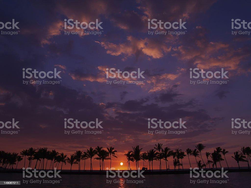Sunset at Waikoloa and palm tree royalty-free stock photo