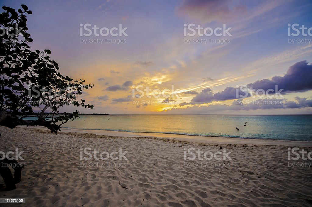 Sunset, Beach, blue and purple sky, paradise royalty-free stock photo