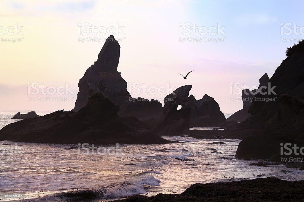 Sunset Beach in Washington Peninsula stock photo
