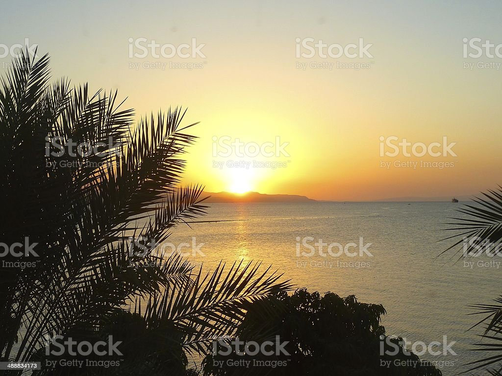 Sunset behind palm trees, Djibouti royalty-free stock photo