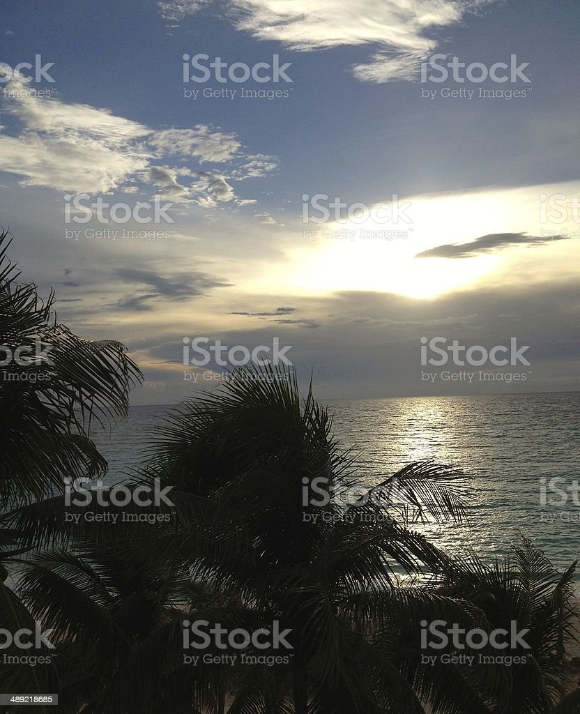 Sunset behind palm trees in Cancun royalty-free stock photo