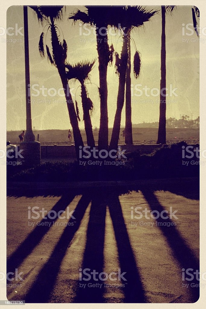 Sunset Behind Palm Trees - Vintage Postcard royalty-free stock photo