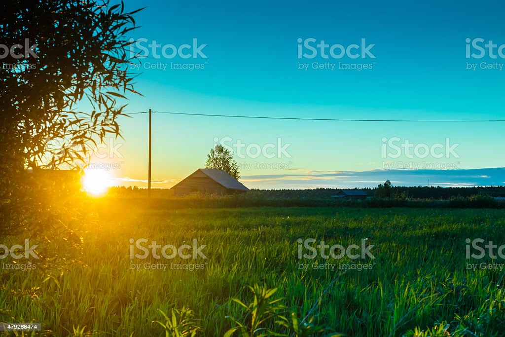 Sunset Behind The Branches stock photo