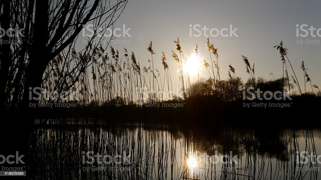 Sunset behind the river bank royalty-free stock photo