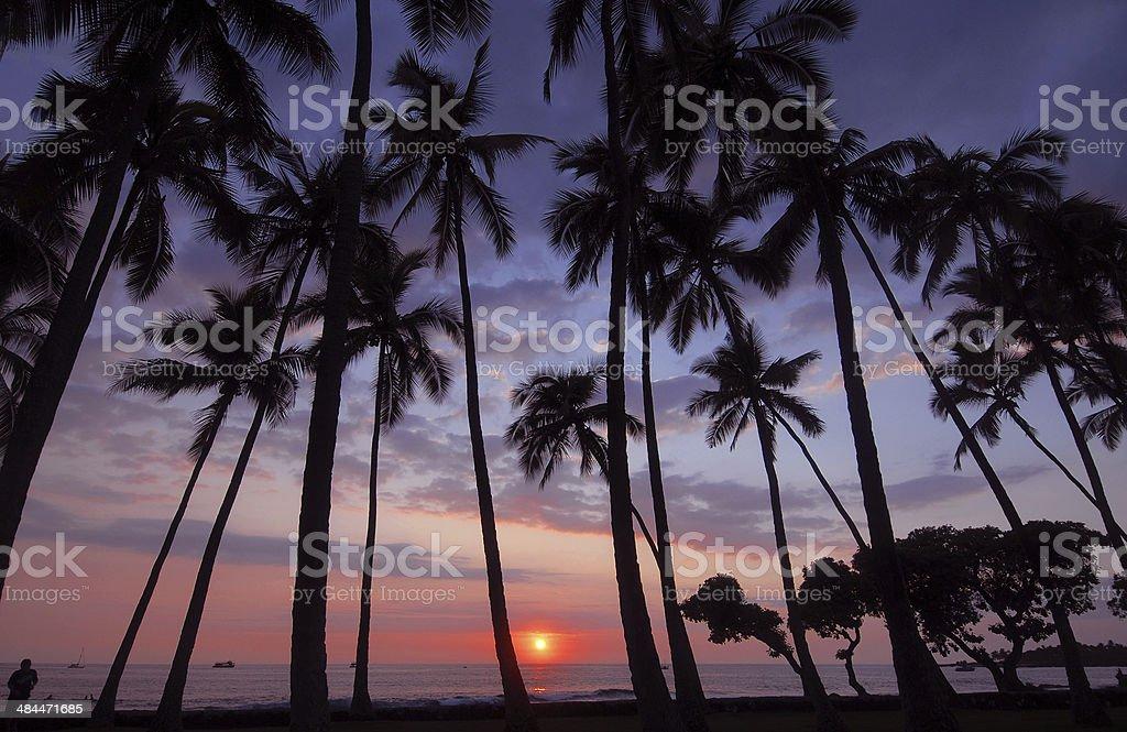Sunset, Big Island of Hawaii, USA stock photo