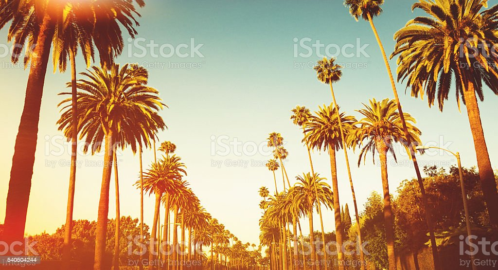 sunset blvd on beverly hills stock photo