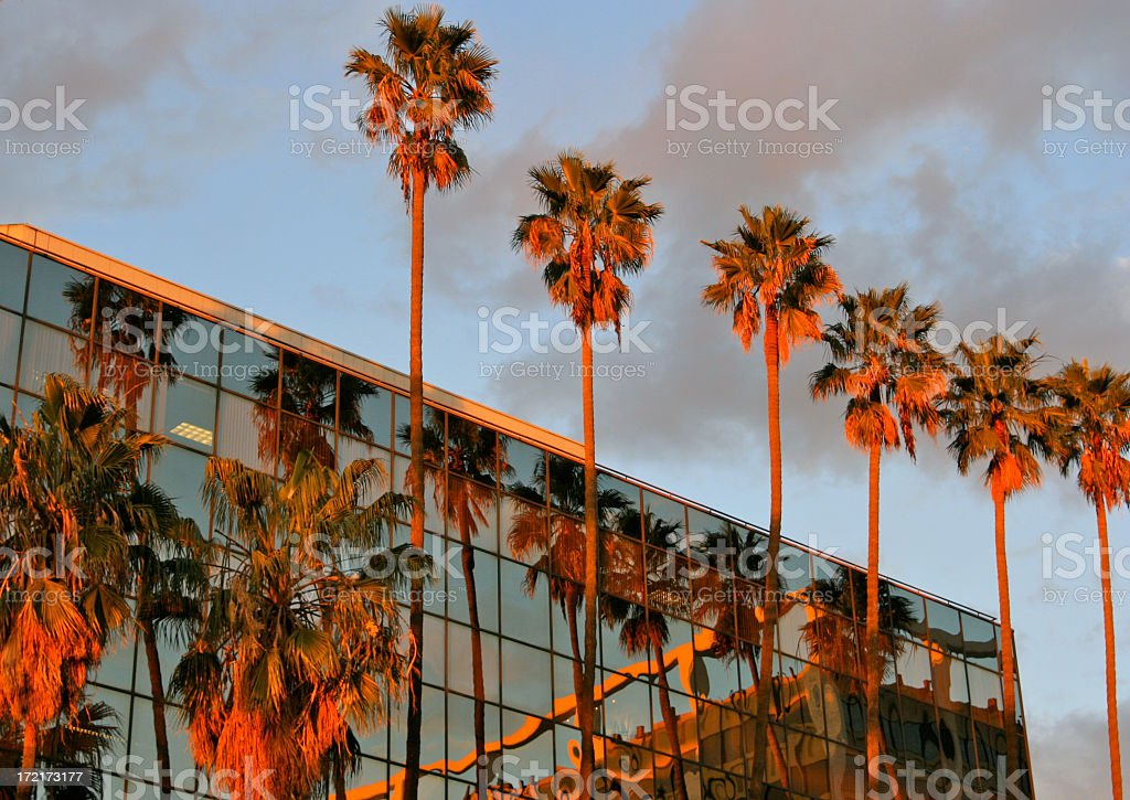 Sunset Boulevard Business royalty-free stock photo