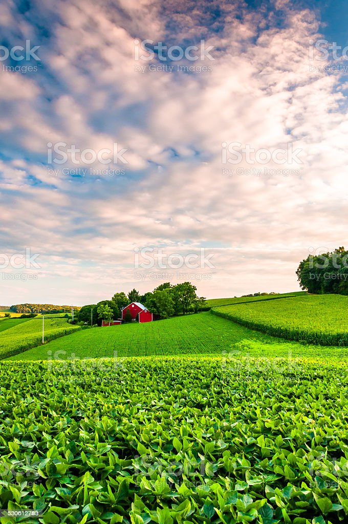 Sunset clouds over a farm in Southern York County, Pennsylvania. stock photo