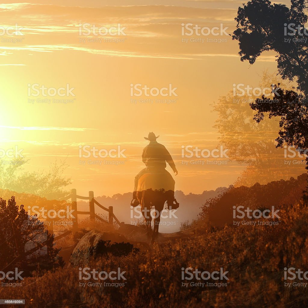 Sunset Cowboy stock photo