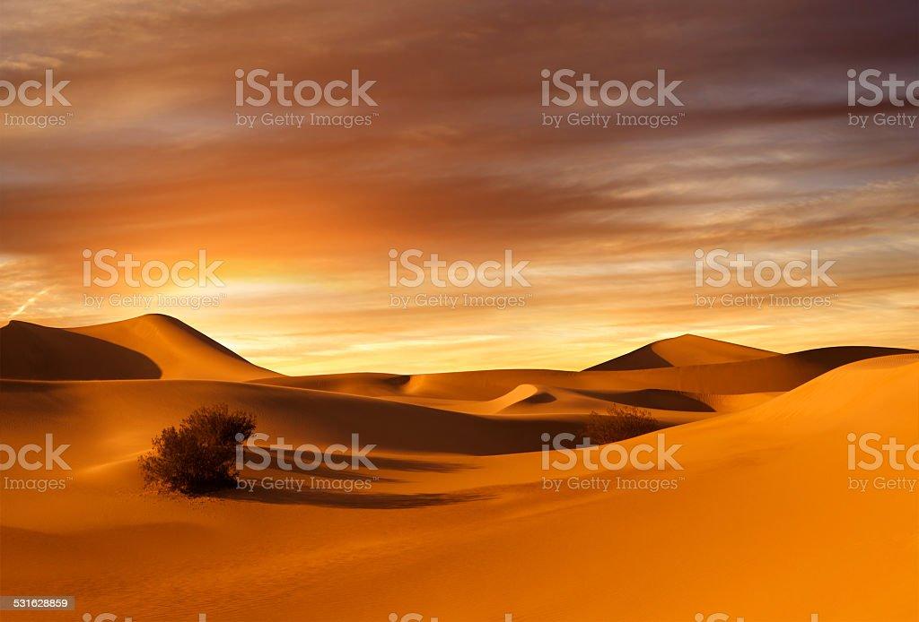 sunset dunes stock photo