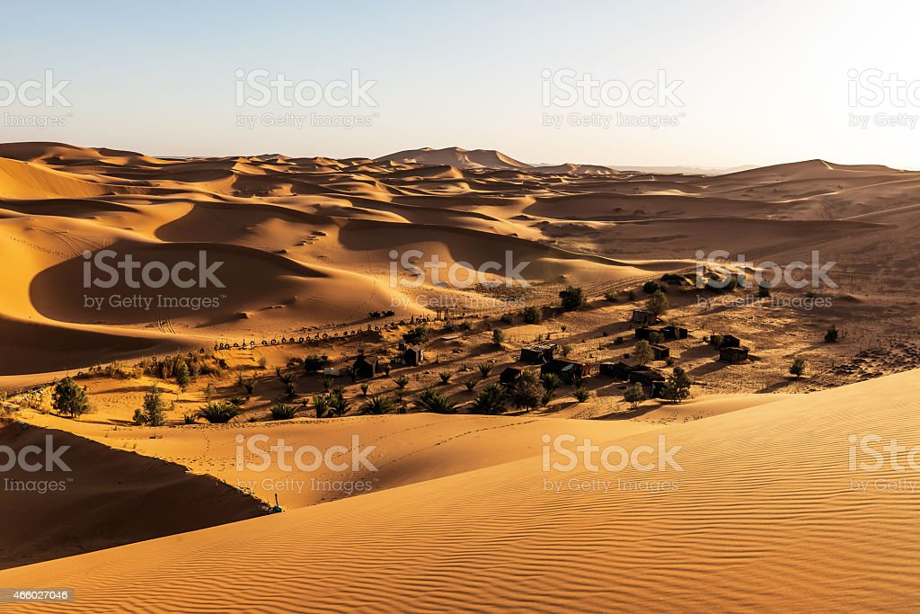 Sunset Erg Chebbi Sand Dunes,oasis,, Morocco, Northern Africa stock photo