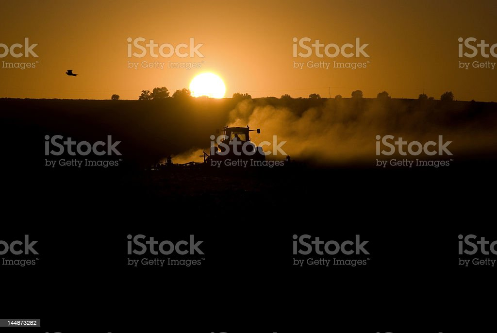 Sunset Farmer royalty-free stock photo