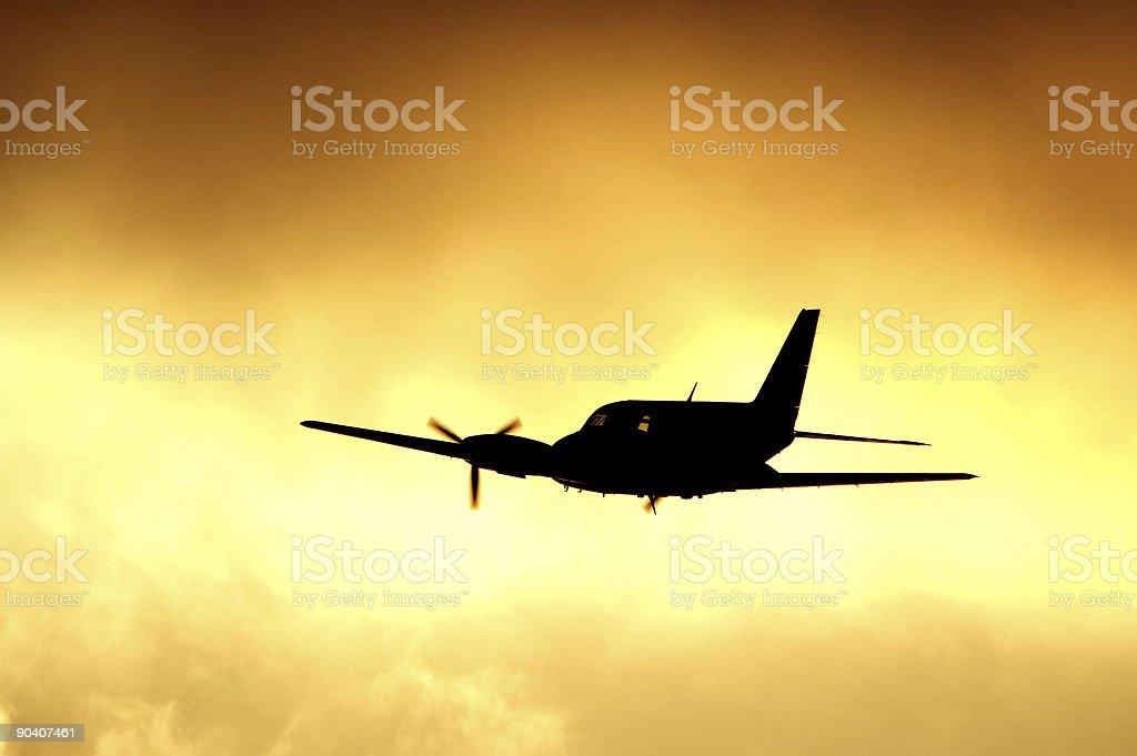 Sunset Flight royalty-free stock photo