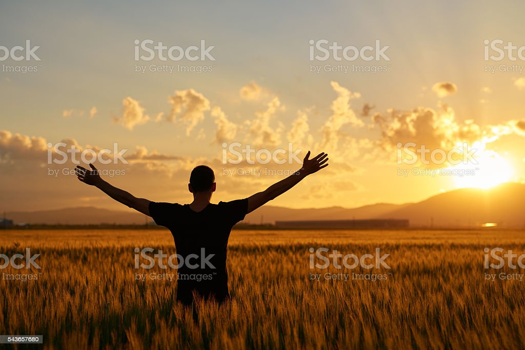 sunset, freedom and feelings stock photo