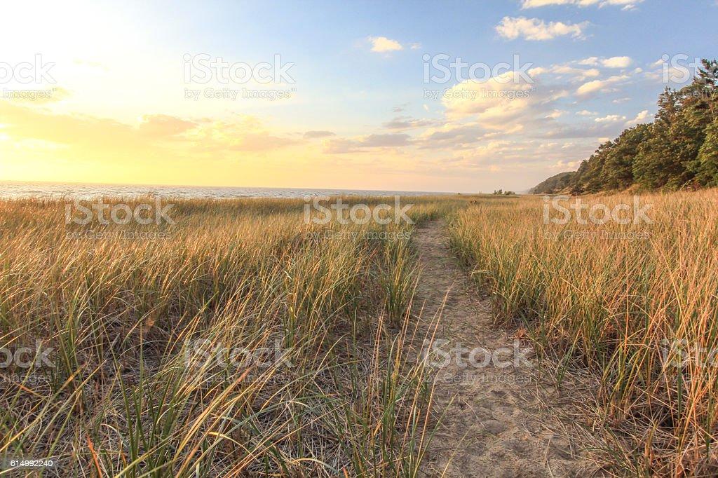 Sunset Horizon Over Golden Dunes stock photo