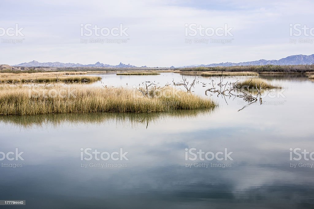 Sunset in a Desert Wetlands royalty-free stock photo
