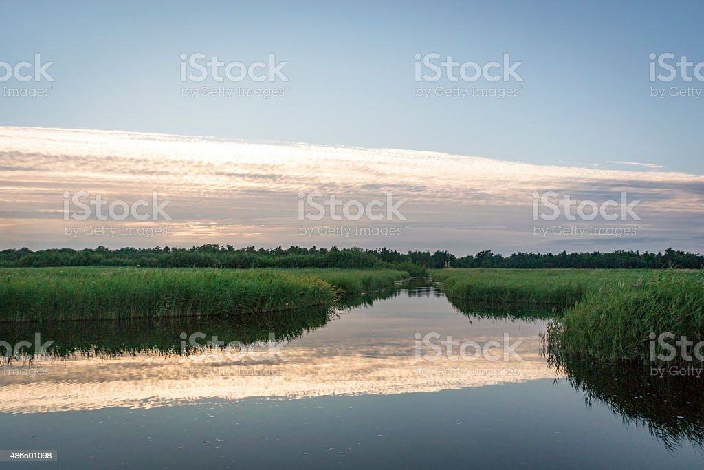 Sunset in a nature reserve stock photo