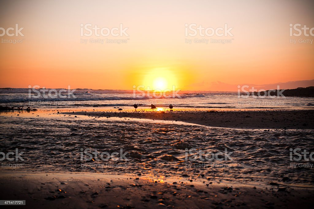 Sunset in California stock photo