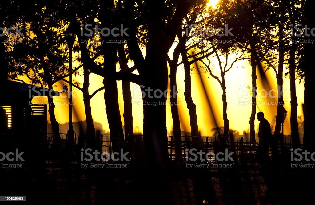 Sunset in Central park. royalty-free stock photo