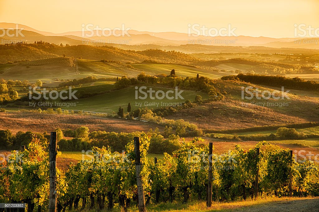 Sunset in Chianti stock photo