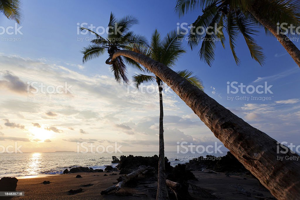 Sunset in Corcovado National park royalty-free stock photo