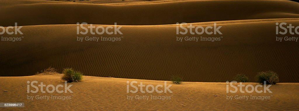Coucher de soleil dans le désert photo libre de droits