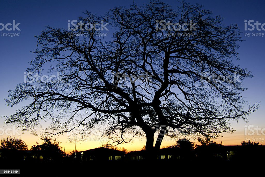 Sunset in Estaquinha royalty-free stock photo