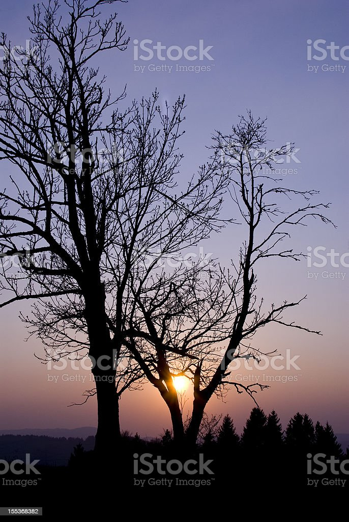 Sunset in Germany royalty-free stock photo