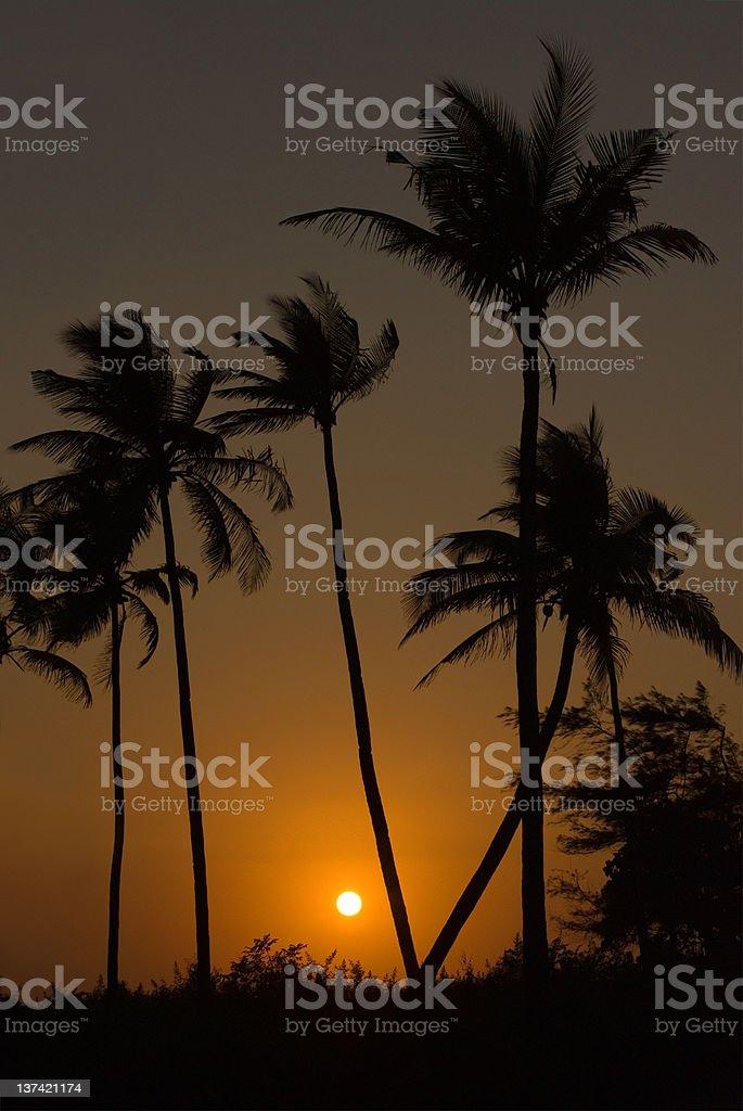 Sunset in Goa stock photo