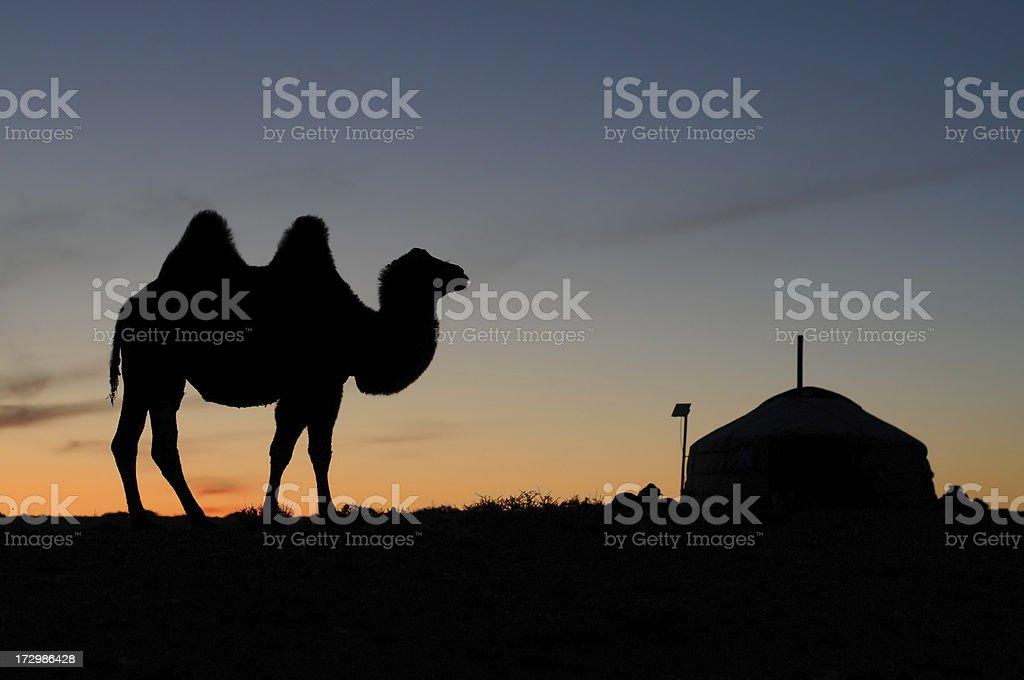 Sunset in Gobi desert royalty-free stock photo
