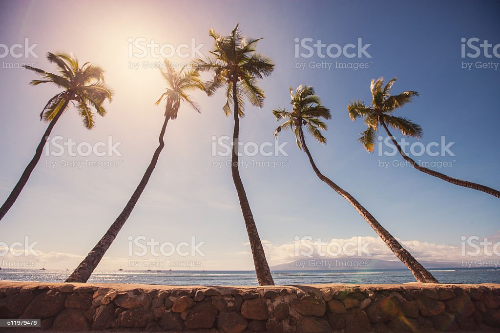 Sunset in Lahaina, Maui, USA stock photo