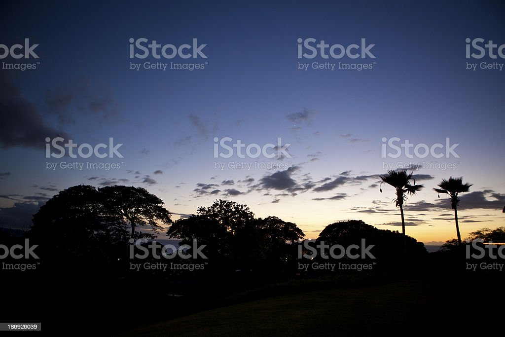 Sunset in Maui, Hawaii with Two Palm Trees royalty-free stock photo