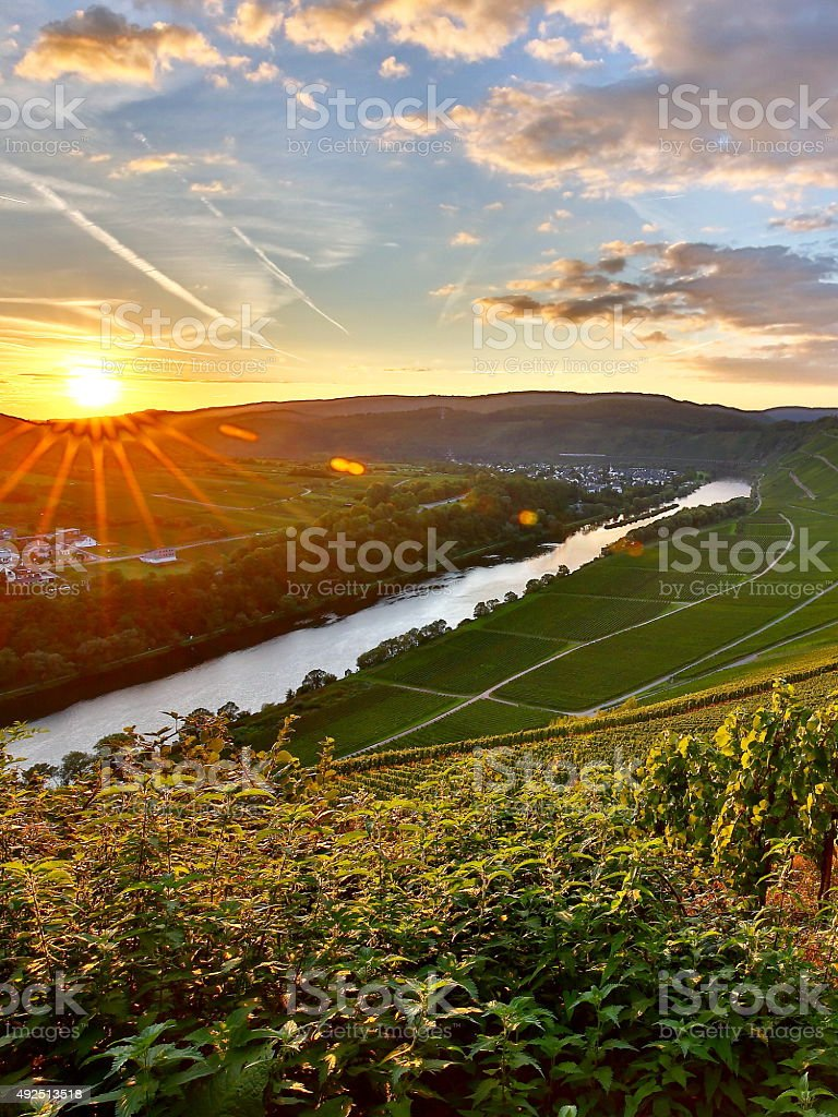 sunset in moselle valley stock photo
