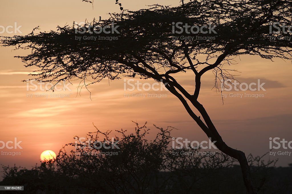 Sunset in Omo Valley stock photo