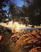 Sunset in Santa Monica, California, USA