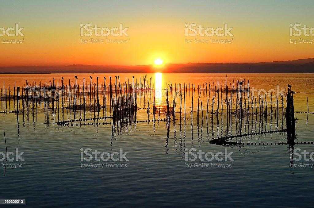 Sunset in the Albufera (Valencia) stock photo