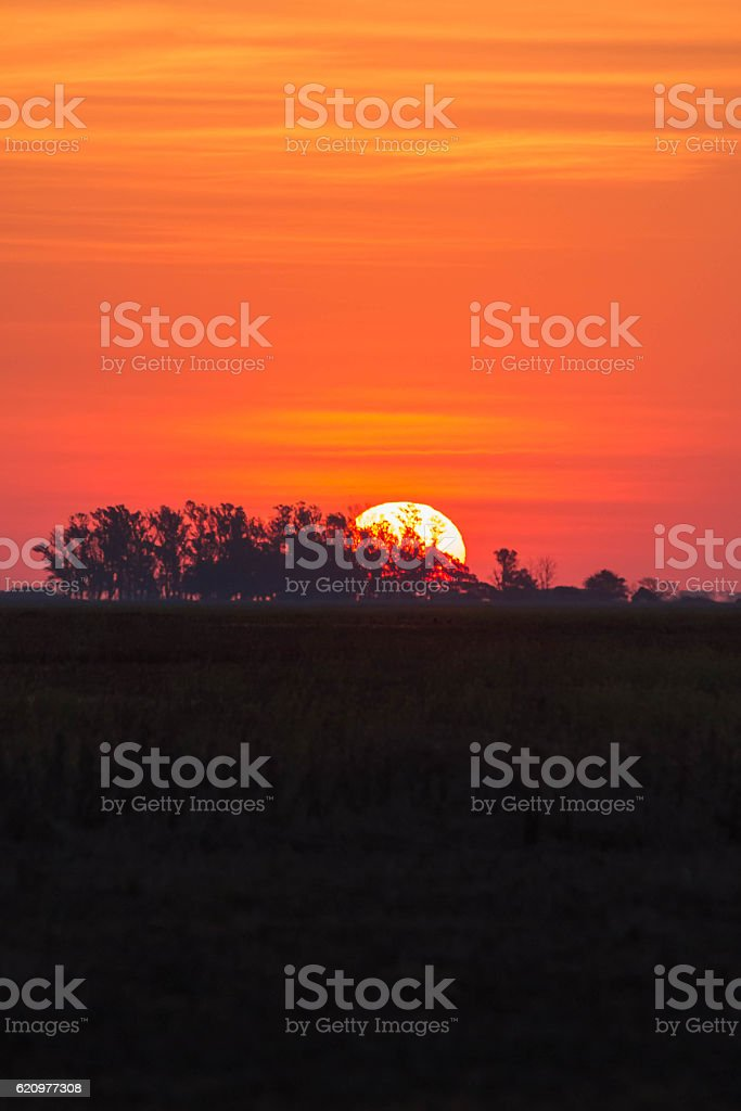 sunset in the countryside stock photo