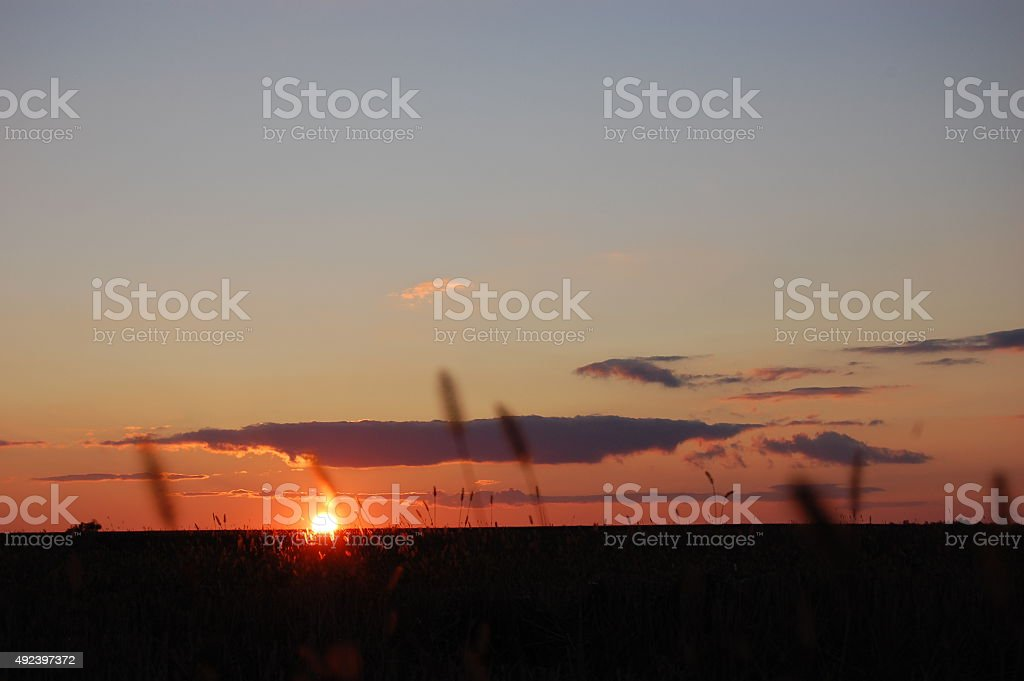Sunset in the field. royalty-free stock photo